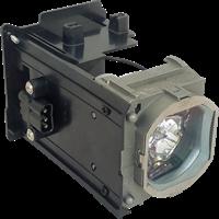 EVEREST ED-P68 Lampa med modul