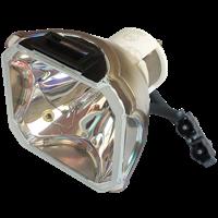 INFOCUS C460 Lampa utan modul
