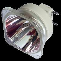 INFOCUS IN5124 Lampa utan modul