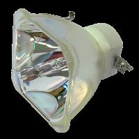 NEC M300WG Lampa utan modul