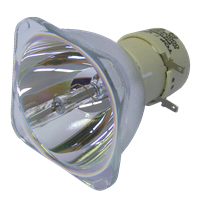 NEC NP-V300W+ Lampa utan modul
