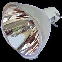 NEC P452H Lampa utan modul