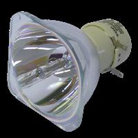 NEC V260G Lampa utan modul
