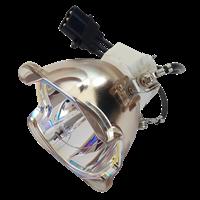 SANYO PDG-DWL2500 Lampa utan modul