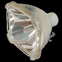 SANYO PLC-X421N Lampa utan modul