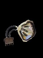 SHARP PG-C30XE Lampa utan modul