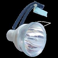 SHARP PG-F312X Lampa utan modul